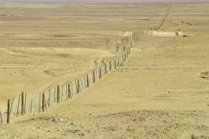 Famous Fences